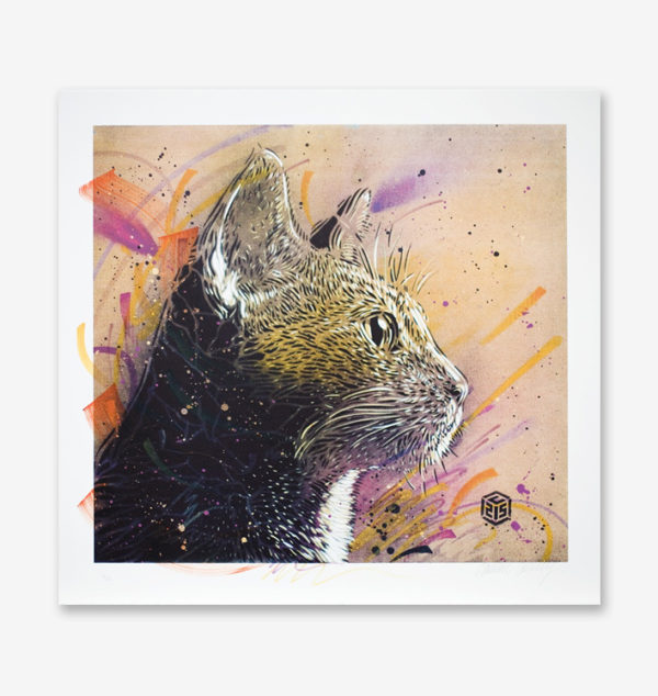 magnificat-c215-print-them-all-lithograph