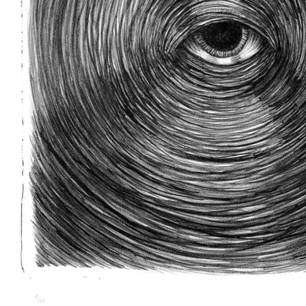 Eye Of Life-619