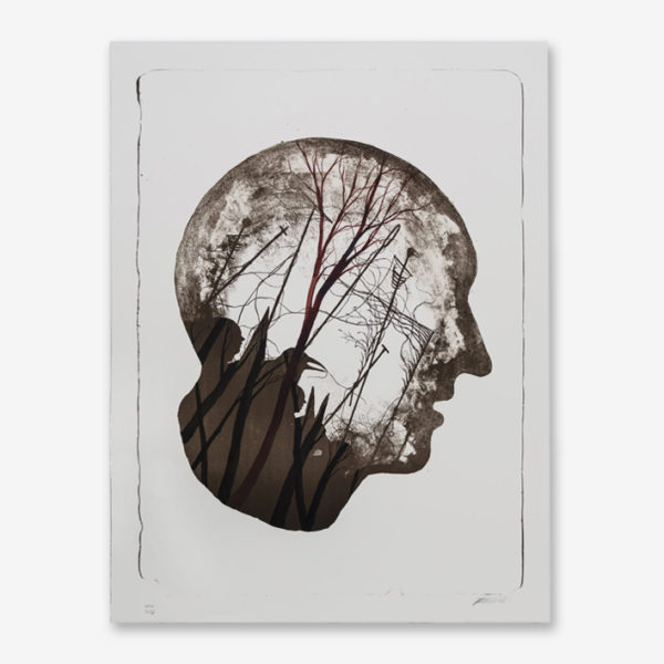 stateless-hpm-1-15-david-de-la-mano-print-them-all-lithograph