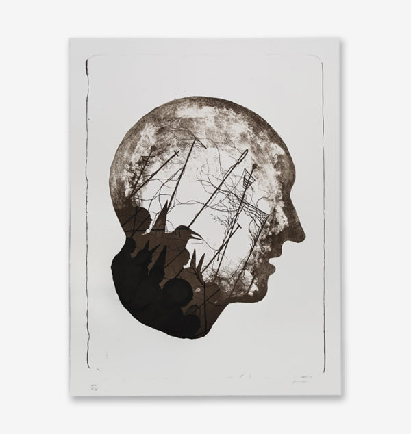 stateless-hpm-4-15-david-de-la-mano-print-them-all-lithograph