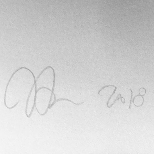 signature-john-armleder-print-them-all-no-stain-no-gain-mamco-geneve