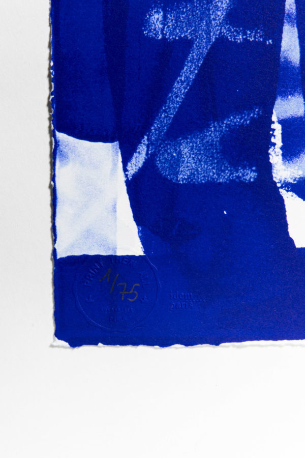 lasting-blue-edition-zes-print-them-all-lithograph-numbered-abstract-art-publishing-house